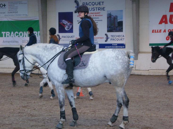 Journée équitation 6 ans et +