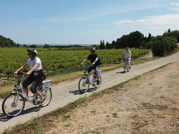 Balade accompagnée en Vélo Electr.