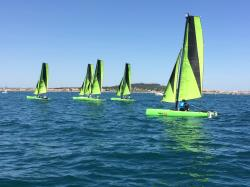 Topaz14-vert-2.JPG
