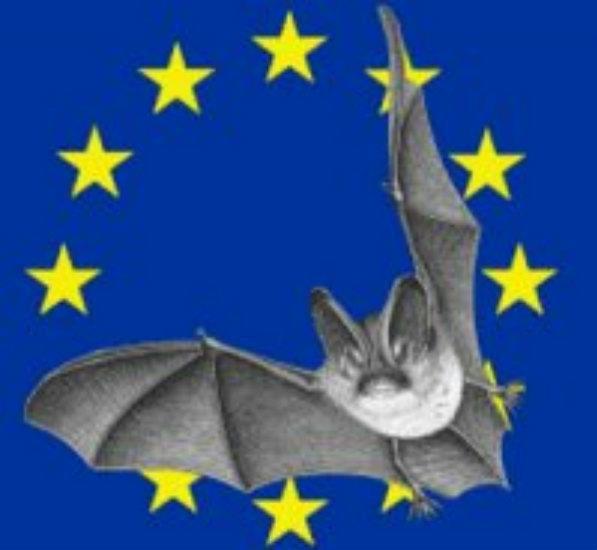 Nuit européenne de la chauve souris