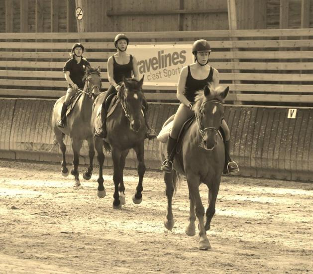 OCTOBRE Stage Galop 3/4 Grand Manège(semaine 43)
