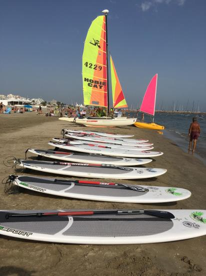 Point Location/ 1H de paddle