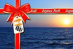 OFFRE SPECIALE NOEL balade accompagnée en kayak de mer pour 1 personne