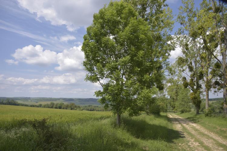 26/07 - Randonnée d'une 1/2 journée de la vallée de l'Epte à la Forêt de La roche Guyon (2,5 km)
