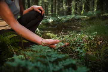 A la rencontre de l'énergie des arbres avec la sylvothérapie