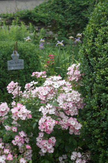JOURNEES EUROPEENNES DU PATRIMOINE - Atelier adulte étiquettes de jardin - Dimanche 20 septembre 2020 de 14h à 16h