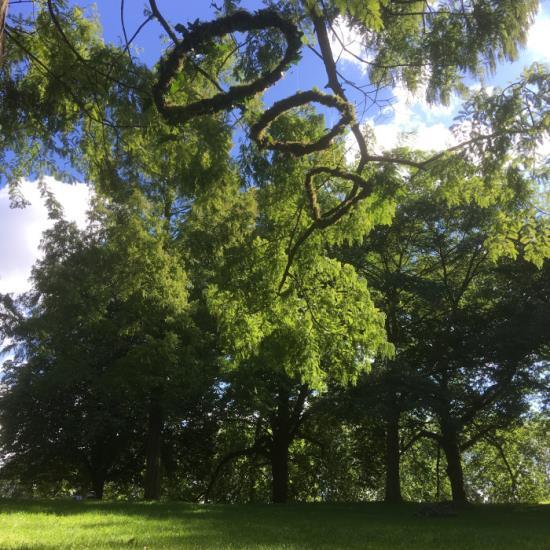 Exposition de Land Art d'Emmanuelle Briat dans les jardins et le Château d'Auvers