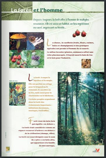 """Exposition """"La Forêt"""""""
