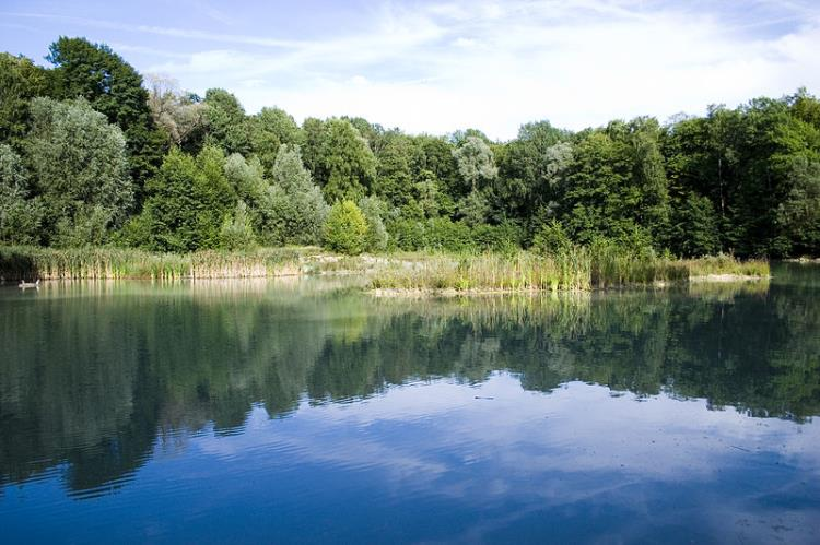 Sortie en Forêt de Nerville